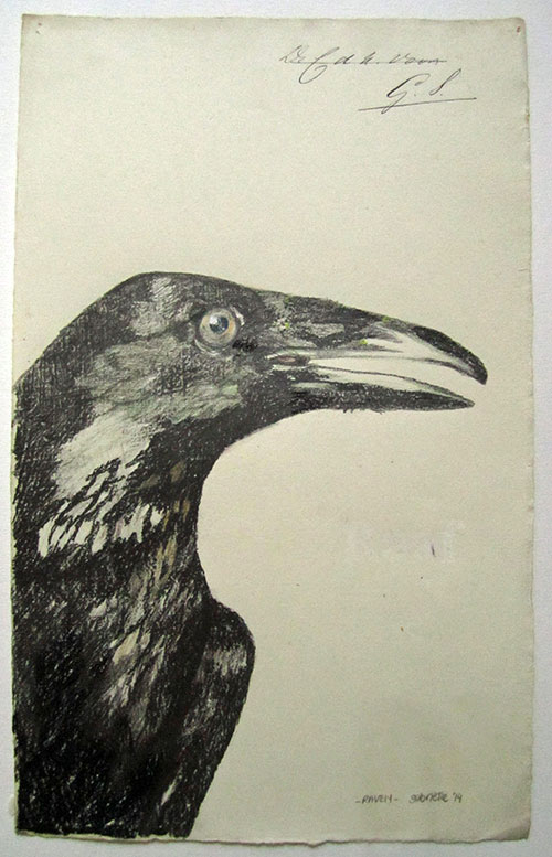 Gabrielle Kroese, Raven, potlood / kleurpotlood / conté op oud papier, 34,4 x 21,5 cm, € 375,-