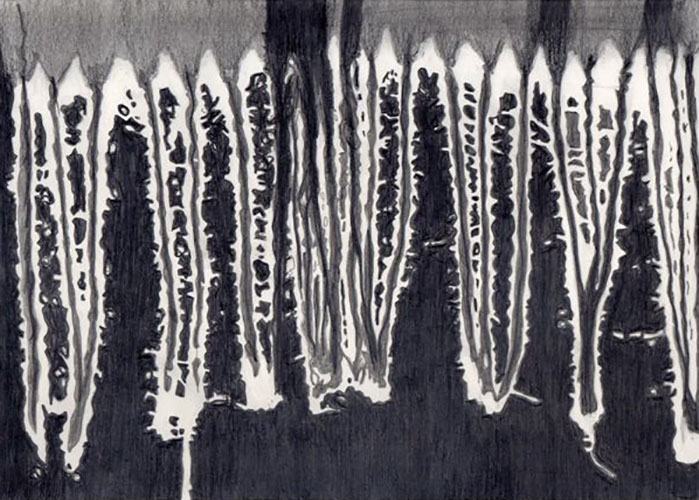 Petra Moerman, Sjaal franje, potlood, grafiet op papier, 19,5 x 27,5 cm, € 325,-