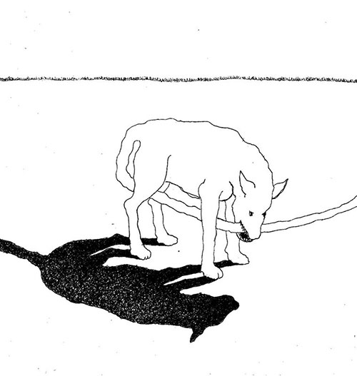 Rieks Pepping, Gebeten hond, pigment liner op papier, 19,5 x 18,3 cm, € 200,-