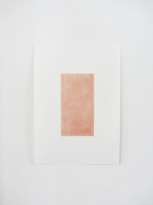Janina Schipper, Koper, pastel op tekenpapier, 42 x 29,7 cm, € 375,-