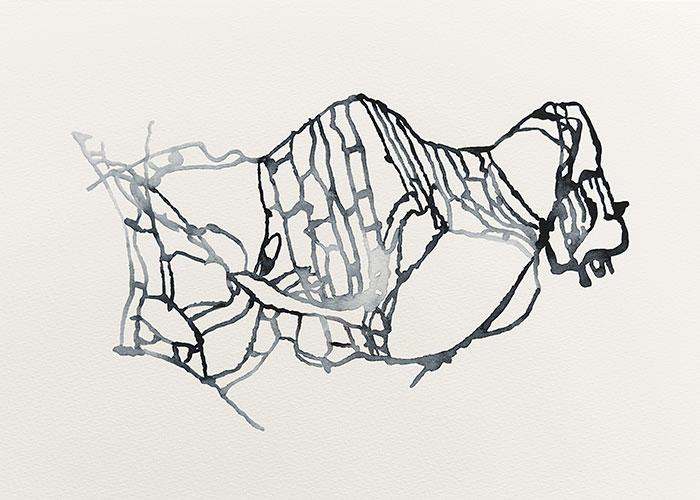 Ronald de Ceuster, Deformed Rozet,  aquarelverf op papier, 29,7 x 42 cm, € 300,-
