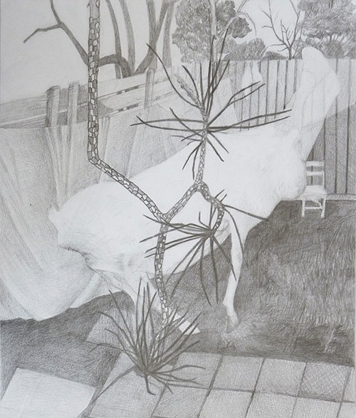 Anna Niederbremer - z.t. potlood op papier 29 x 22 cm € 250,-