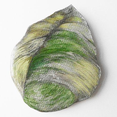Ariena Roode - Corpus Arenae II potlood op papier / MDF 14 x 11 cm € 95,-
