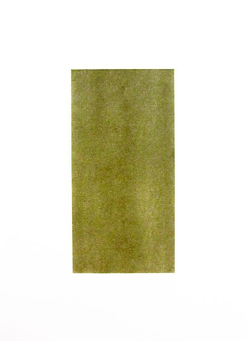 Janina Schipper - Yellow Ochre Extra Dark pastel op papier 24 x 18 cm € 245,-