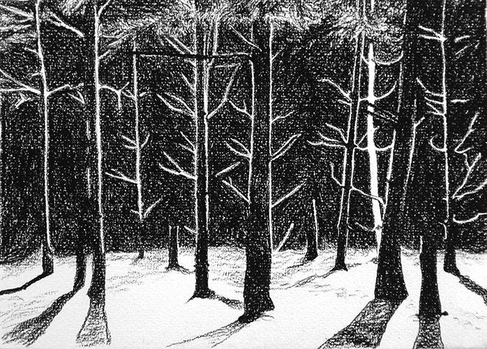 Judith Schepers - Pine forrest houtskoolpotlood op papier 15 x 21 cm € 195,-