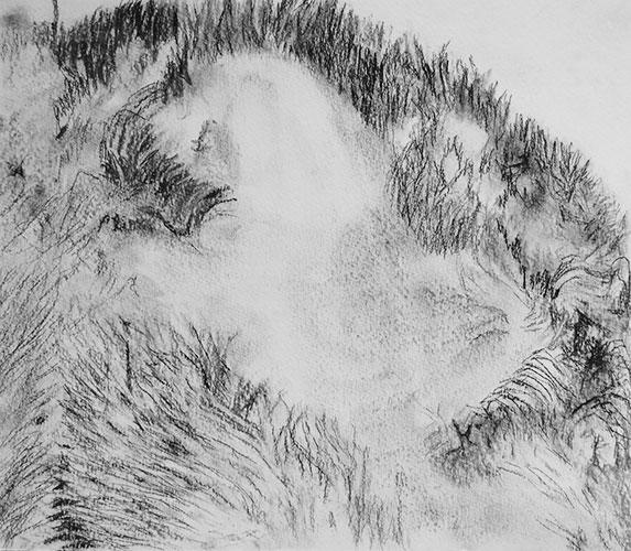 Marije Roos - z.t. houtskool, grafiet, kleurpotlood op papier 21 x 25 cm € 150,-