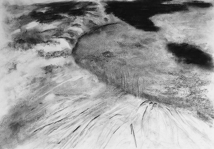 Marije Roos - z.t. houtskool, grafiet, pastelkrijt op papier 29,7 x 42 cm € 175,-