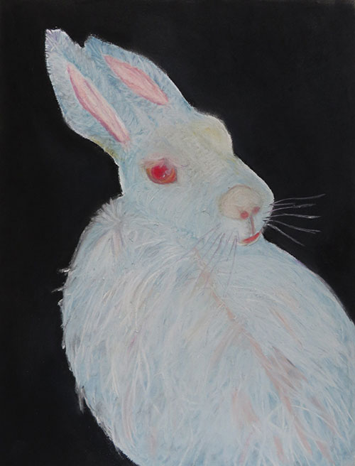 Annelies Schuls - In another world pastelkrijt op papier 32,5 x 25 cm € 275,-