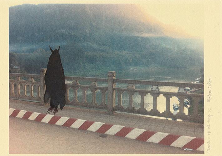 Malou Cohen - Monsters op de weg inkt op fotoprint 14,5 x 21 cm € 95,-