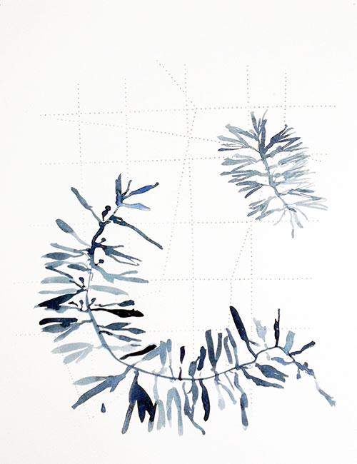Ingrid Pasmans - Atkins 1 aquarel op doorgeprikt papier 35 x 27 cm € 200,-