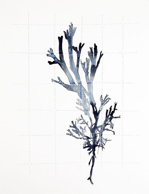 Ingrid Pasmans - Atkins 2 aquarel op doorgeprikt papier 35 x 27 cm € 200,-
