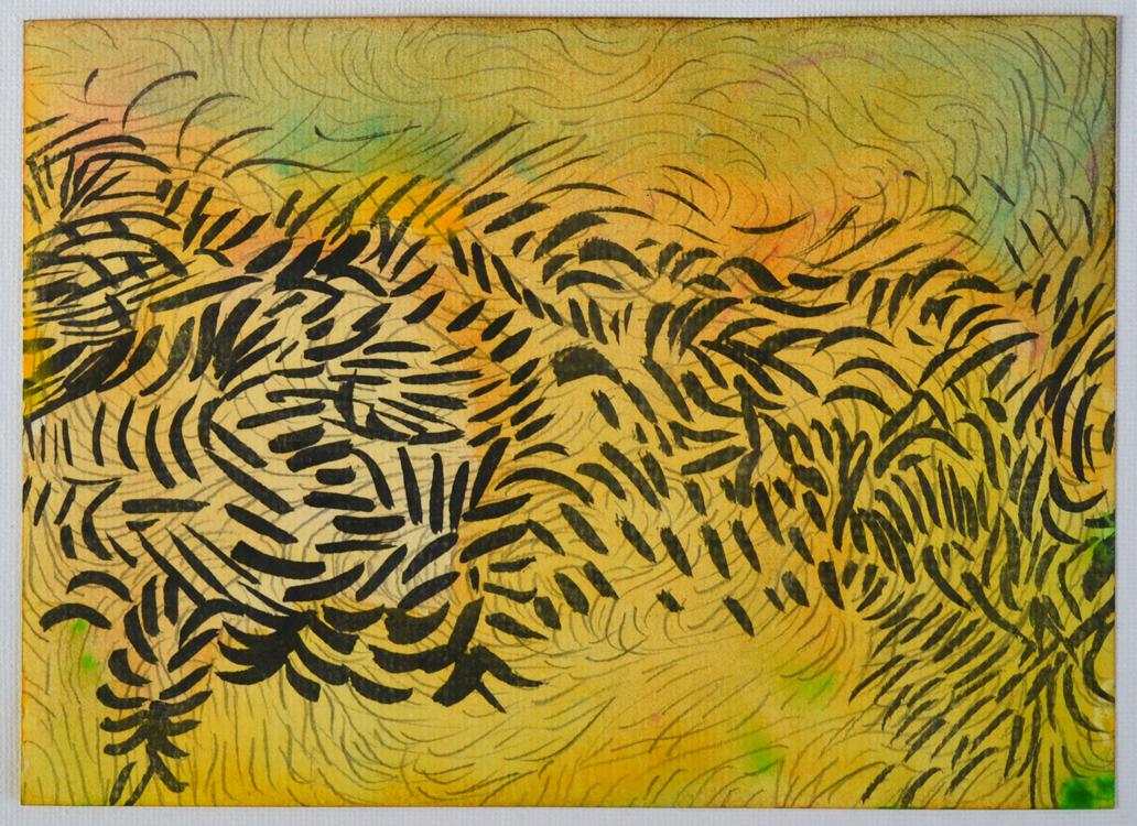 Josine Timmer – uit de serie: Nature drawings
