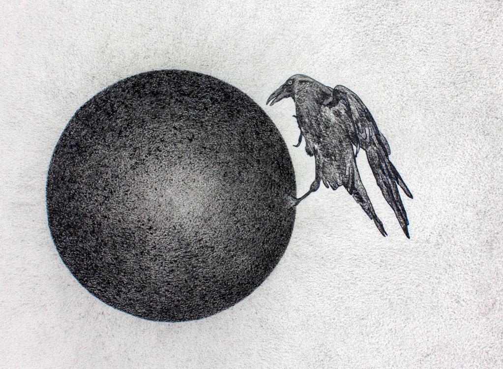 Jaco van der Vaart – Cool Crow