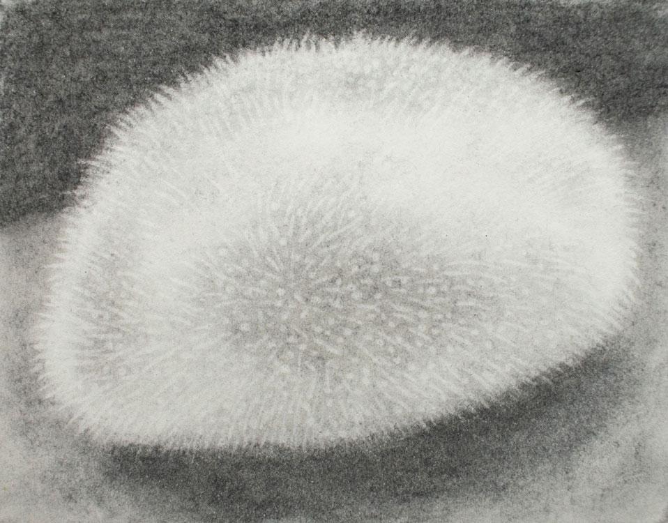 Jolien van der Beek – Sleeping blob